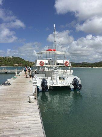 St. James's Club & Villas: New vessel - Sponge Bob