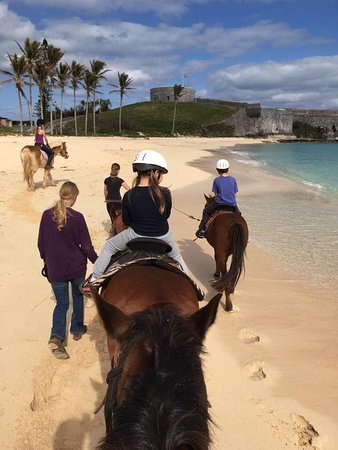 St. George, Bermuda: My 5 year old on Indian and 9 year old on Sunny. And that's Jacks head!
