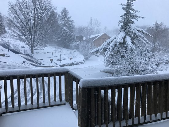 Fogelsville, Pensilvanya: Waking to a snowy day outside my door (yes, they shoveled!)