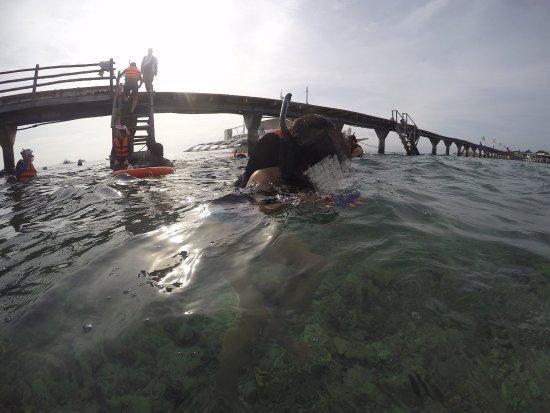 Nalusuan Island Resort: 要去房間必須先走一段木製的橋 在橋頭那可以潛水(但不能擦防曬乳,希望大家為了環境及魚群們一起保護它們) 在房間的後面還有一個沙灘 房間不多大概只能住20左右個人數 在這的房間都是高腳屋很特別水