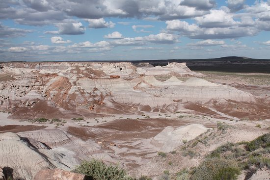 Winslow, AZ: Great views as far as the eyes can see