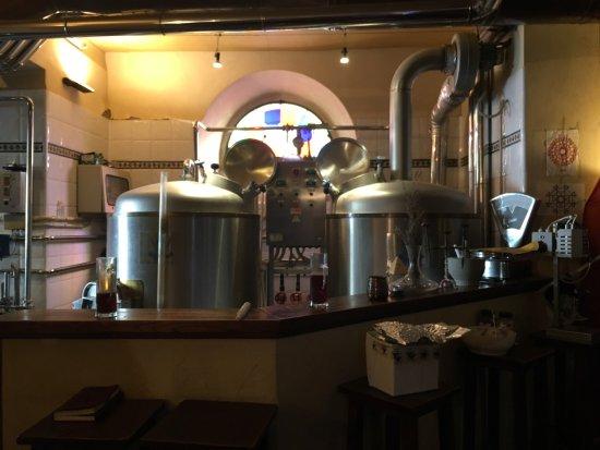 Birreria Artigianale Il Bovaro: Degustazione delle birre artigianali prodotte all'interno dello stesso locale. Le spine sono dir