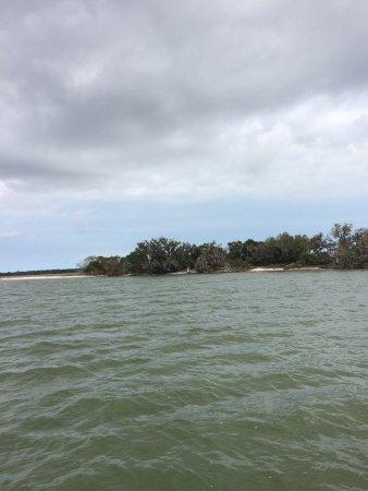 Fernandina Beach, FL: Great morning cruise to Cumberland Island. Enjoyed Captain Kevin's narration. History and nature