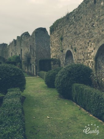 Amberley, UK: photo5.jpg