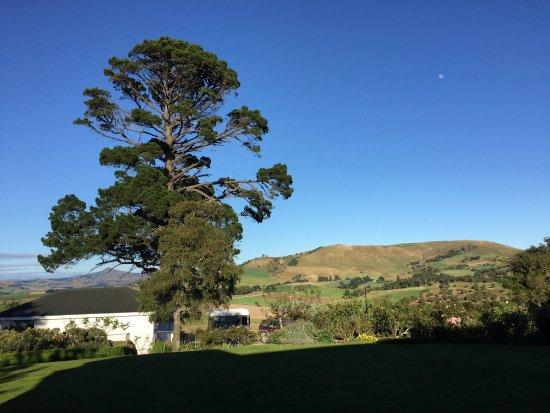 Palmerston, New Zealand: photo0.jpg