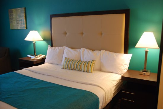Best Western Baraboo Inn : Guest Room