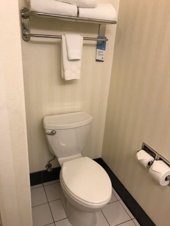 Fairfield Inn & Suites Rockford: Toilet