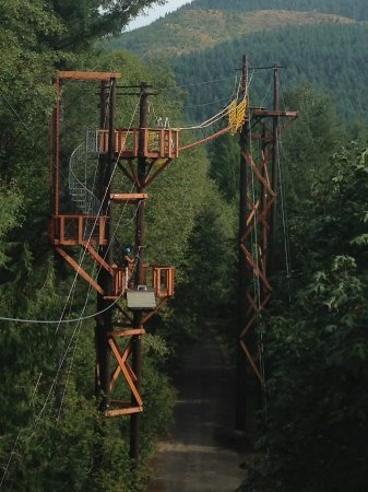Amboy, WA: Zipline X | High Bridge #7