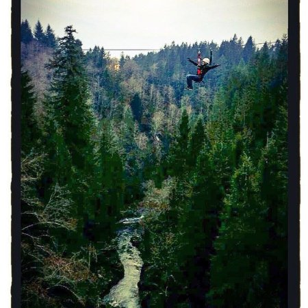 Amboy, WA: Zipline X | Canyon Crossing