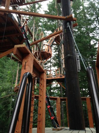 Amboy, WA: Zipline X | Course Entrance