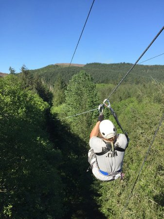 Amboy, WA: Zipline X | Above the trees