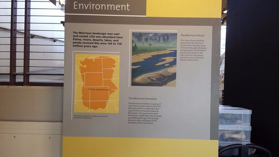 Dinosaur, CO: Information about the environment