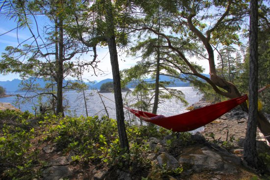 Powell River, Canada: Relax in a hammock and watch the day go by