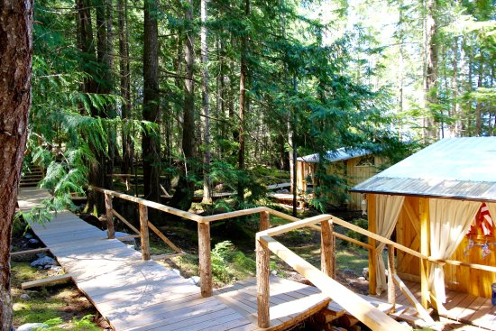 Powell River, Canada: Cedar boardwalks wind through the forest and link cabanas