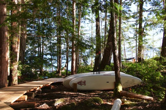 Powell River, Canada: Stand Up Paddle Boards available for all guests to use