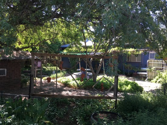 Hopetown, South Africa: Garden view
