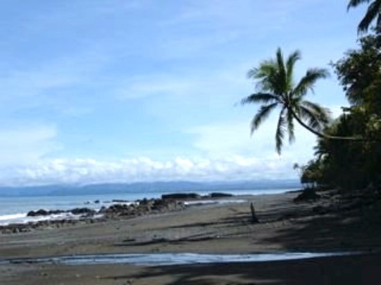 Pavones, Costa Rica: Pristine beaches - walk all day and rarely see other people!