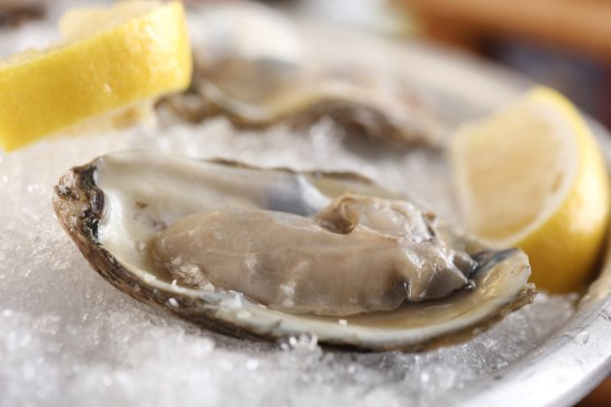 Chesapeake City, MD: Fresh Shucked Oysters