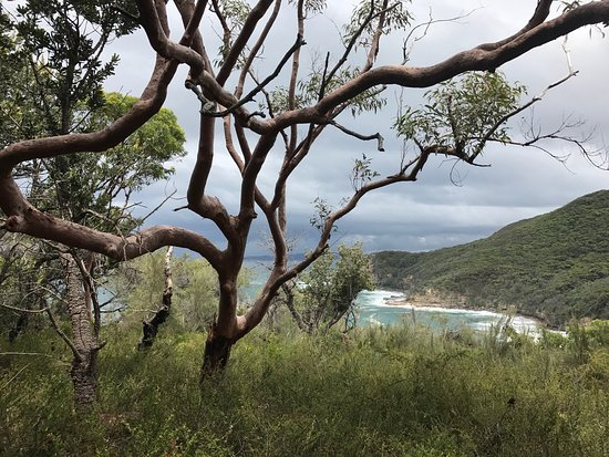 Killcare, Australia: Bouddi National Park