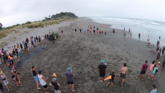 Opotiki, New Zealand: The annual new year beach dig