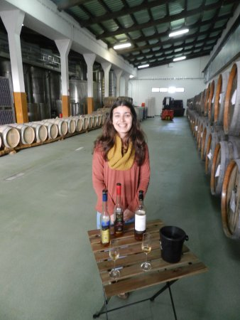 Madalena, Portugal: The tasting at the end of the tour
