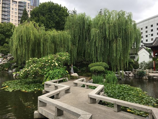 Chinese Garden Teahouse, Sydney - Chinese Gardens Darling Harbr ...
