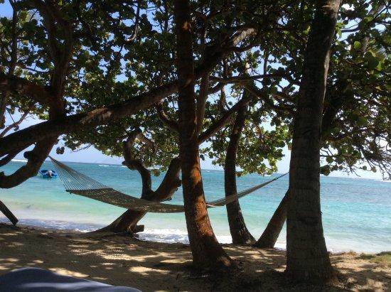 Sugar Reef Bequia-billede