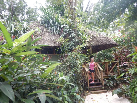 Ian Anderson's Caves Branch Jungle Lodge: Jungle Cabana