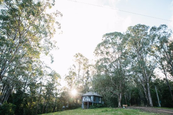 Dungog, Australië: Peace and tranquility at the Nest