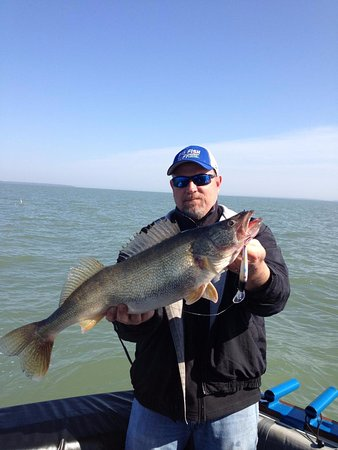 Marblehead, OH: Another Lake Erie Trophy Walleye!