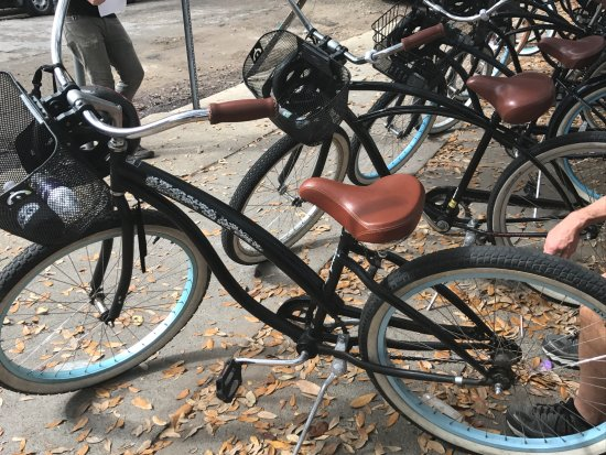 Confederacy of Cruisers Bike Tours : My ride for the day