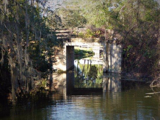 Leesburg, FL: Bridge to Blount's Island