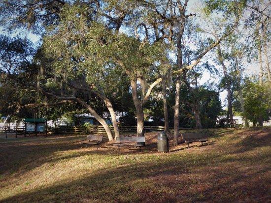Leesburg, Floryda: Welcome to Haynes Creek Preserve