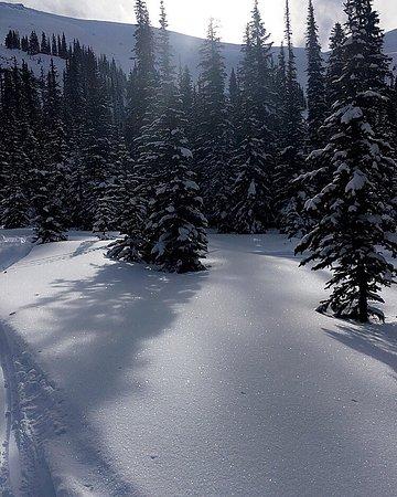 Golden, Kanada: photo4.jpg