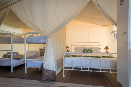 Huskisson, Avustralya: NEW Safari Tents