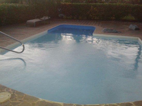 Rincon de la Vieja Lodge: Swimming pol