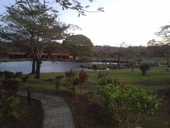 Rincon de la Vieja Lodge: View from restaurant