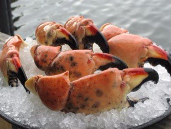 North Palm Beach, FL: Florida Stone Crab (available 10/15-5/15