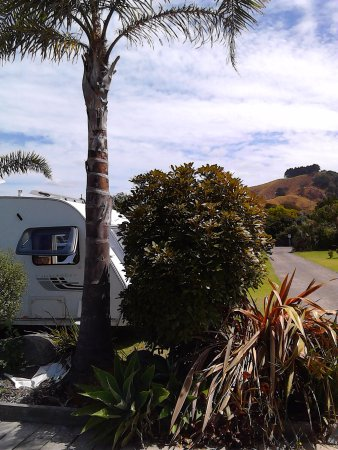 Waihi, New Zealand: Well laid-out and spacious parks