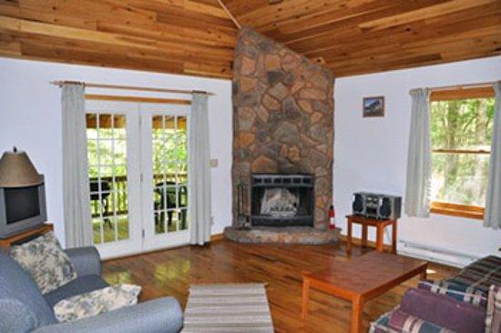 Mount Nebo, WV: Fireplace