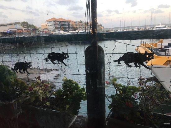 Urangan, Austrália: Chit Chat
