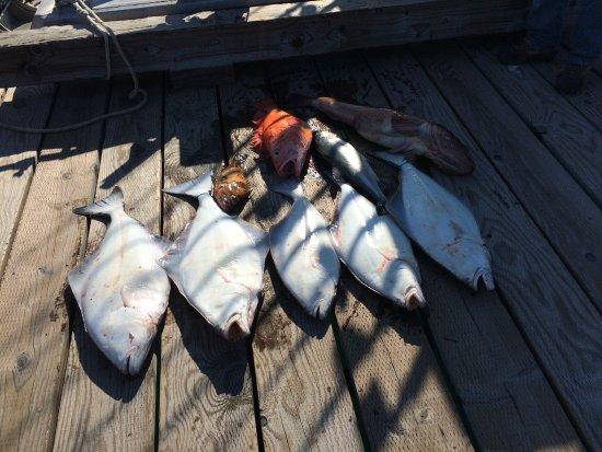 Wrangell, AK: Days catch