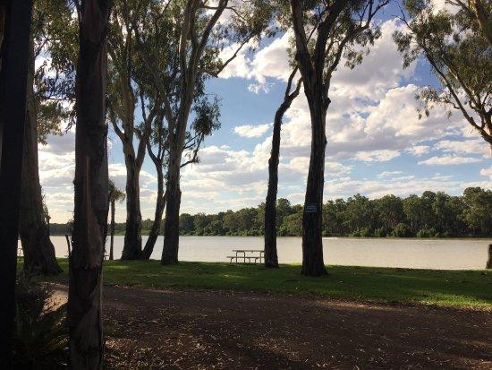 Renmark, Australia: photo3.jpg