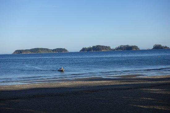 Warkworth, Nueva Zelanda: Snells Beach