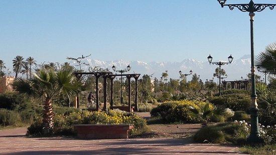 Comment Faire Le The A La Menthe Photo De Morocco Travel Packages