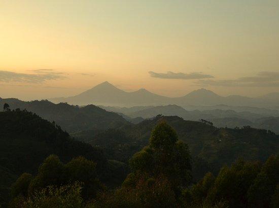Nkuringo Bwindi Gorilla Lodge: photo is taken from the window of the room.