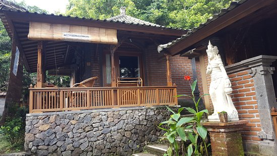 Munduk, Indonésia: Outside view of my room!