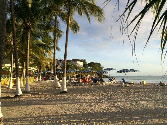 Canella Beach Hotel-Restaurant-bild