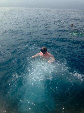 Aroha Taveuni: Rainbow Reef
