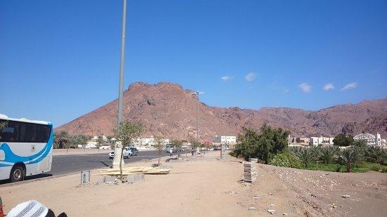 Mount Uhud: DSC_0370_large.jpg